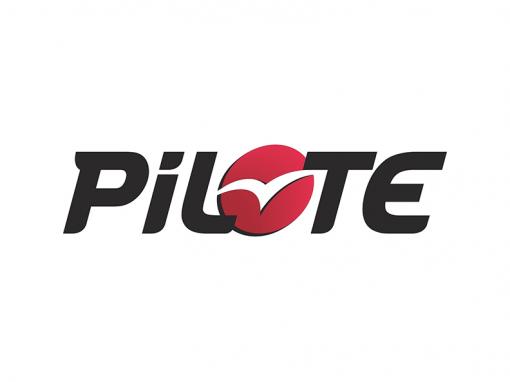 Pilote Wohnmobile kaufen und verkaufen